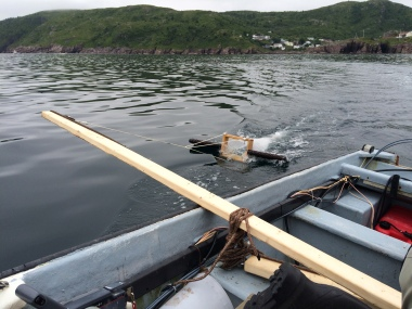 """An """"Arm"""" for DIY trawling fashioned from a 2x4 and lashed to a small pleasure craft. The trawl is LADI rather than BabyLegs, but the arm is the same. We used a pole and hook to bring the trawl in from the water. The arm keeps the trawl out of the wake of the boat."""